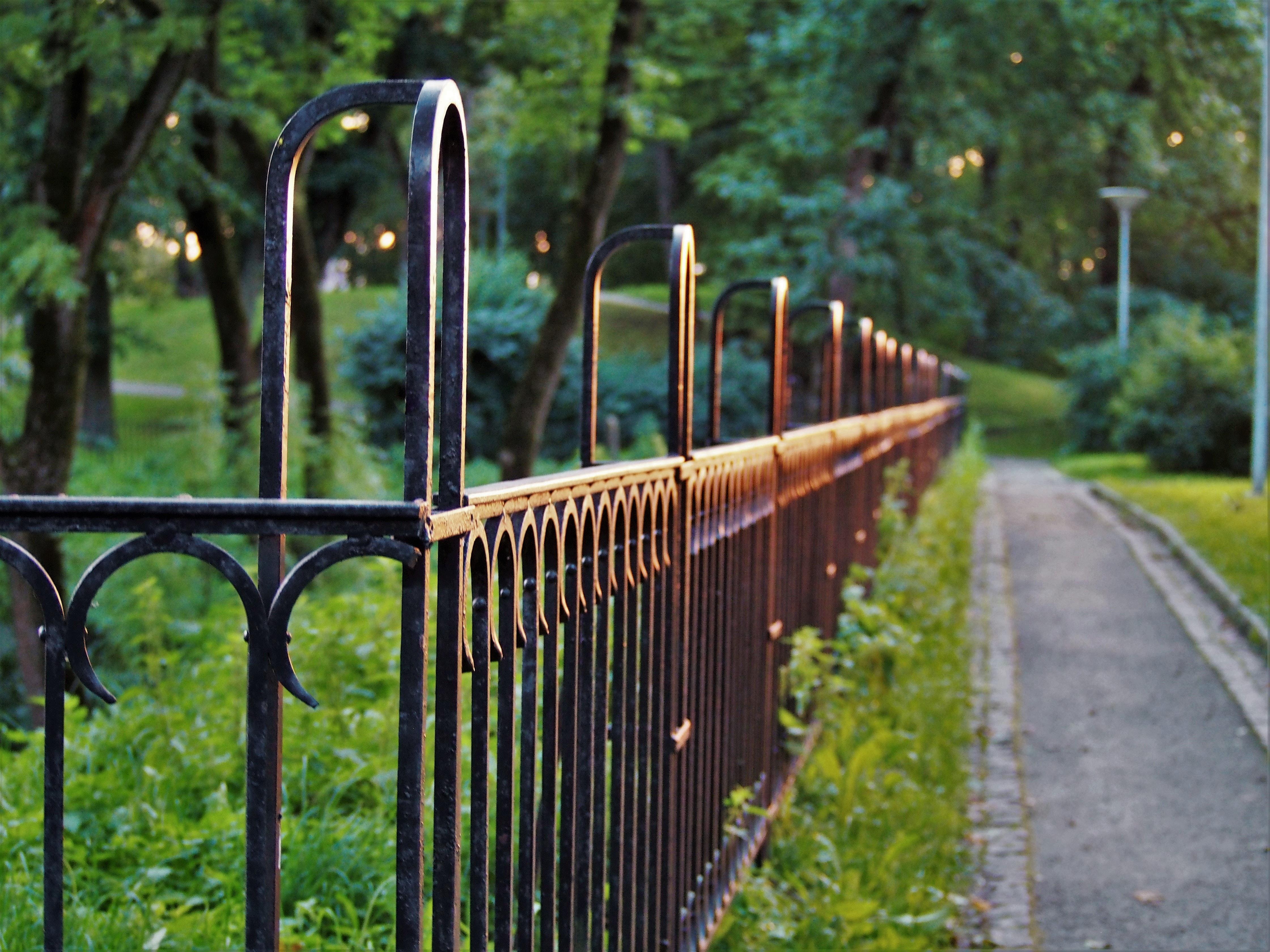 české ploty
